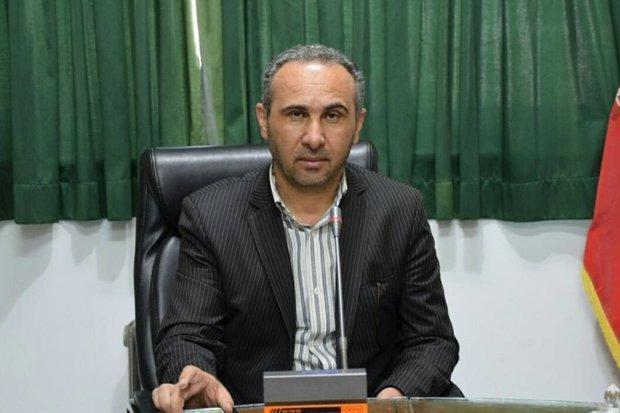 تعاونی های خانوادگی موفق نبوده اند، ثبت 678 تعاونی در سوادکوه