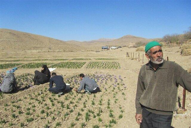 سهم روستاهای کشور در فراوری ناخالص ملی 1.7 درصد است