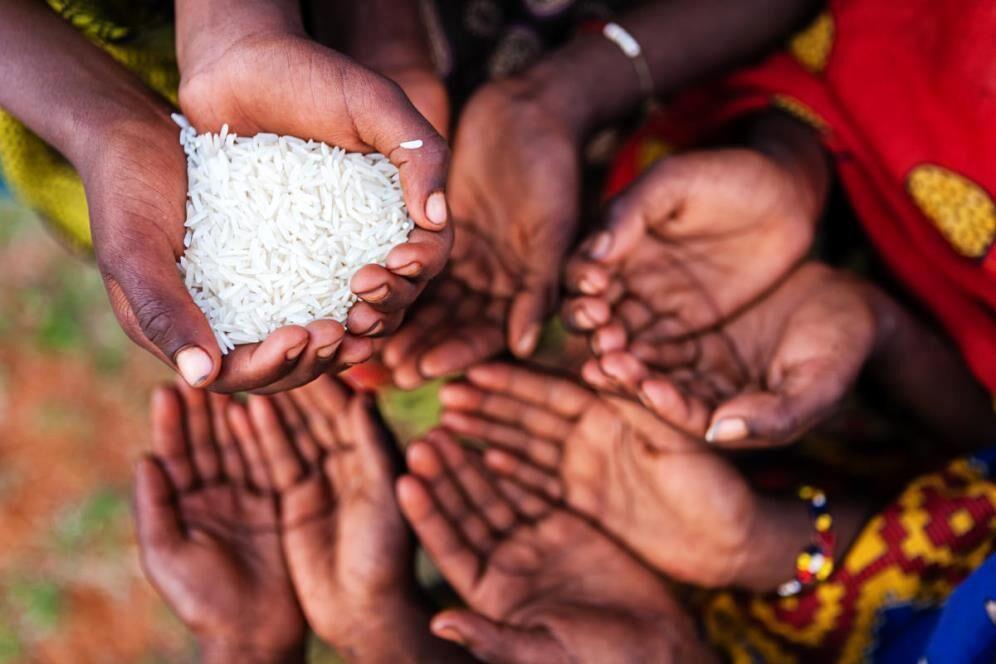 دنیا در آستانه همه گیری گرسنگی