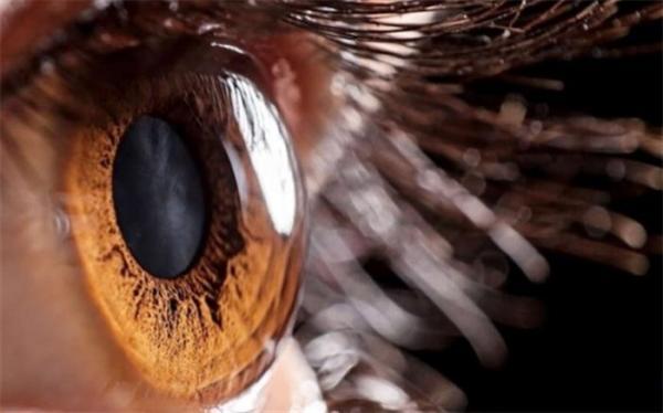 معین مقدار هوش بر اساس مقدار مردمک چشم